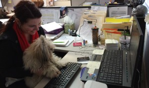 Clio helps her owner Nicole answer emails.